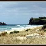 5kms of pristine white sands Opoutere Beach