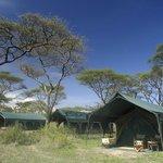 Kirurumu Serengeti Camp