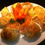 Pan fry meat dumpling
