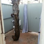 Outdoor showers - superb!