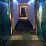 Korridoren var vackert utsmyckad