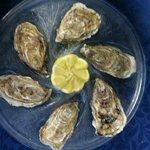 Les 6 huîtres