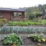 Garden infront of a villa- Kriens