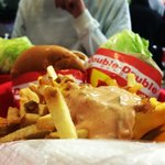 Animal Style Fries, Double-Double & Protein Double-Double