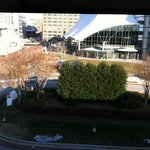 View from room 319