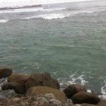 Closer look at the bay