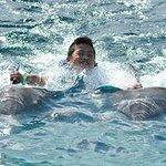 My son just having a blast swimming with the dolphins Diego and Aramis