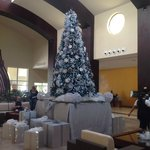 Christmas at NOW Larimar