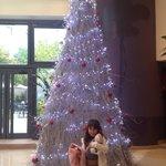 Decoração de Natal na recepção