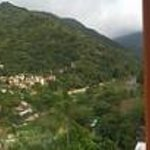 Panoramic view from the treehouse