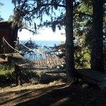 Foto di Treebones Resort