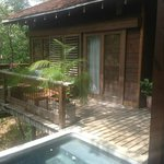 Forest View Suite w/ Pool