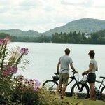 Bord du lac Mercier