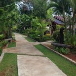 The walkway to the bungalows