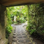 My favorite passageway on the grounds.