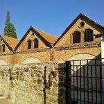 Carmel - погреба