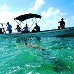 Mexico Kan Tours Sian Kaan Adventure sea turtels