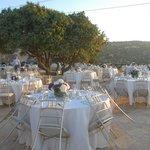 حفلات اعراس