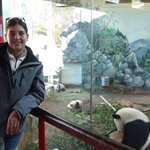 Just us and the pandas