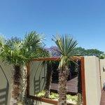 Penthouse roof-top terrace