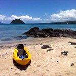 honeymoon island snorkeling