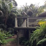Back verandah Pandanus Apartments