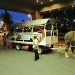 Tour Wagon