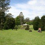 Arboretum grounds