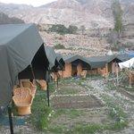 New look tents