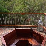 The resident bushbuck Oscar right by the hot tub!