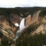 Lower Falls, Yellowstone River.