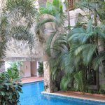 The pool, the garden, and the ancient wall- Casa San Agustin