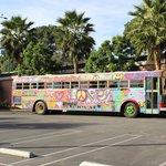Bus in parking lot