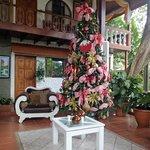 Christmas at Villabosque