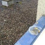 Cendrier non vidé sur le rebord de fenêtre