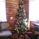 Tree in lobby :)