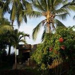 Aussichtsplattform mit Garten