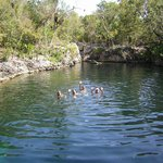 sweet water cenote