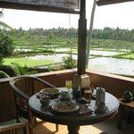 Sicht auf die Reisfelder