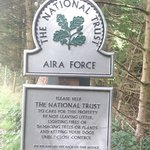 Aira Force, must go!!!