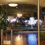 Vista desde la recepción al parque (iluminado por navidad)