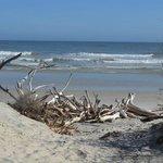 Beach at End of Path