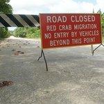 As ruas mais invadidas são fechadas para que os carros impeçam a migração