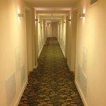 Ковровое покрытие в коридорах и комнатах