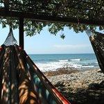 hammock area