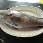 صورة فوتوغرافية لـ Guler's Fish Restaurant