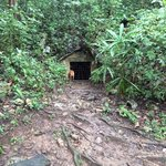 Cave entrance is hidden in the jungle