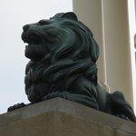 The Lion.