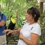 Fun with Toucans!