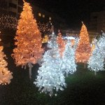 Christmas decorations outside the hotel